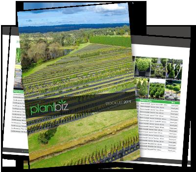 2019 PlantBiz Stocklist